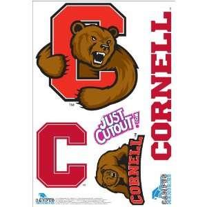 Cornell University   Big Red Wall Graphic