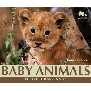 (Natures Baby Animals) (9781598454062): Carmen Bredeson: Books