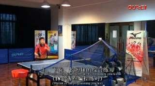 Table Tennis Robot Oukei TW2700 S 9 ** NEW **