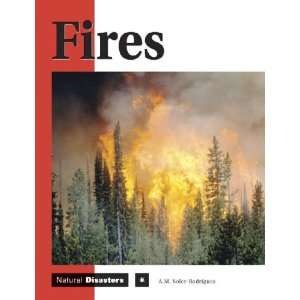 Natural Disasters   Fires (9781590181331) Ana Maria Rodriguez Books