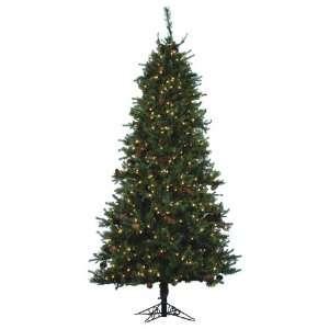 7.5 x 45 St Croix Pine Slm Tree 650 Multi Lights
