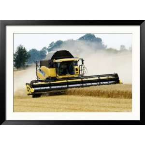 Yellow New Holland Combine Harvester Harvesting Wheat