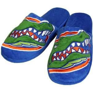 Gators 2010 Official NCAA Big Logo Hard Sole Plush Slippers Size Small