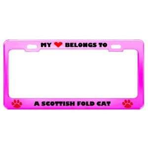 A Scottish Fold Cat Pet Pink Metal License Plate Frame Tag