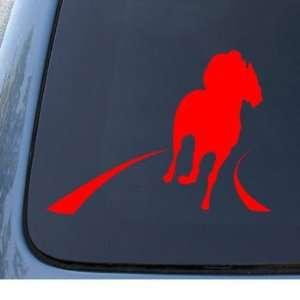 RACE HORSE   Car, Truck, Notebook, Vinyl Decal Sticker #1288  Vinyl