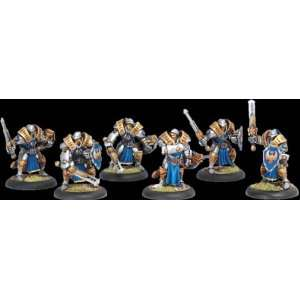 Warmachine Cygnar Sword Knight Unit Box: Toys & Games
