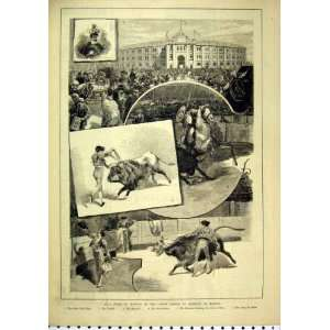 Bull Fight Crown Prince Germany Madrid 1884 Picador: Home