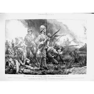 1900 GRENADIER GUARDS BATTLE BIDDULPHS BERG WAR ARMY