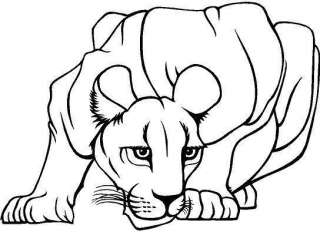Lioness Large Vinyl Decal Car Truck Window Sticker 18