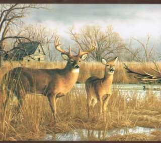beautiful deer buck doe in the farm yard country