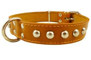 Real Double Ply Leather Dog Collar Studs 1.25wide Light Brown Amstaff