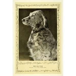 1910 Print Mans Best Friend Adorable Dog W H Stone MA