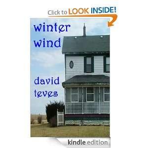 Winter Wind David Teves  Kindle Store