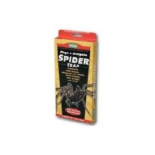 Biocare Non toxic Spider & Silverfish Trap   6 Traps