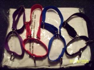Training Martingale Style Dog Collar Greyhounds