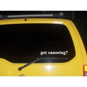 got canoeing? Funny decal sticker Brand New Everything