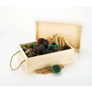 Gift Box With Color Cones and Pine Cone Fire Starters