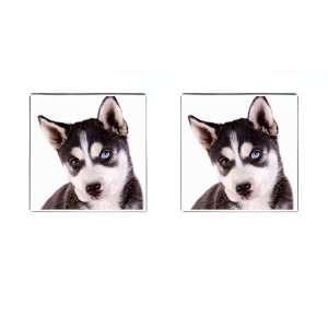 Siberian Husky Puppy Dog 16 Square Cufflinks F0630