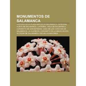 Monumentos de Salamanca Historia de la plaza Mayor de