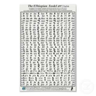 Ethiopian Fidel Feedel Alphabet Amharic Poster from Zazzle