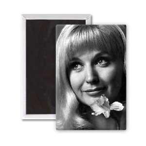 Nyree Dawn Porter   3x2 inch Fridge Magnet   large